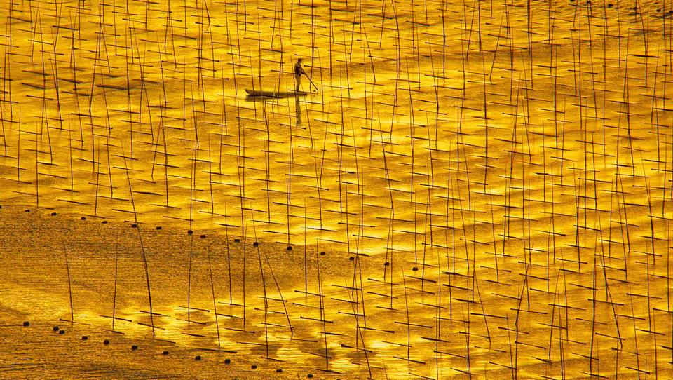 China und Indien forcieren Gold-Importe