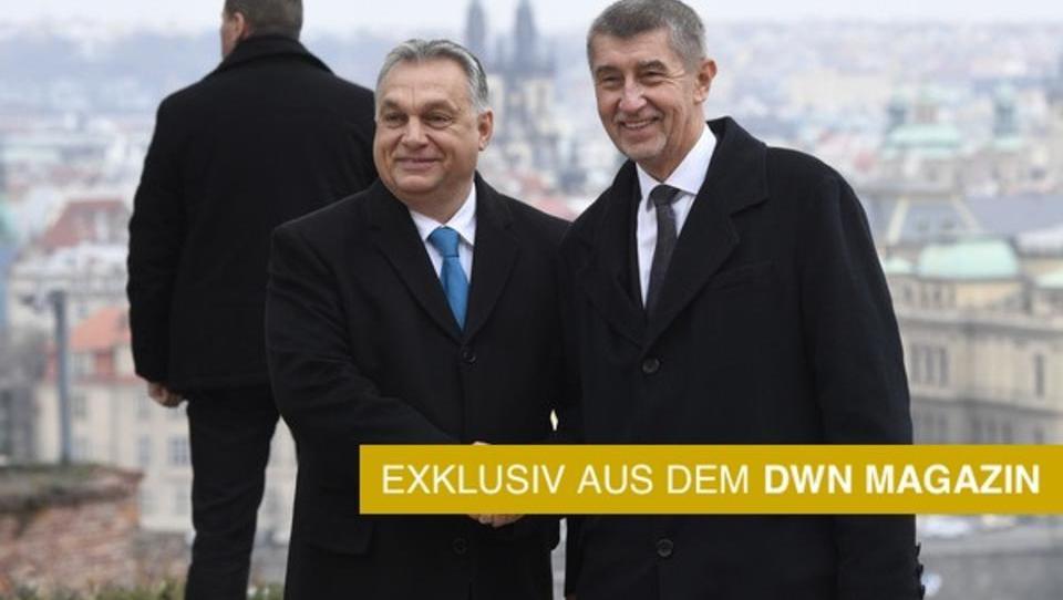 Viele Milliarden einfach weg: Wie Agrarsubventionen in Osteuropa in dunklen Kanälen versickern