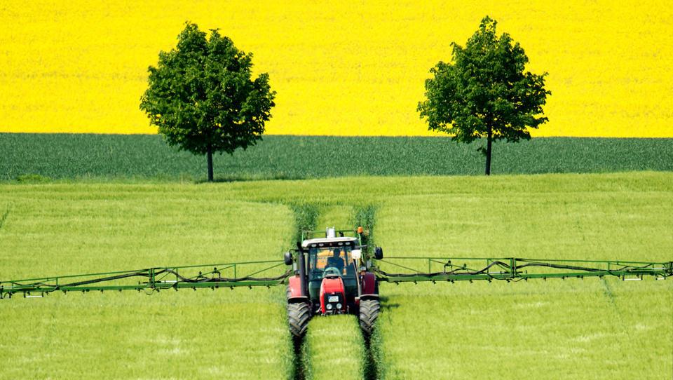 Massiver Unmut über die Politik: Landwirte kündigen Großdemonstrationen in Deutschland und Frankreich an