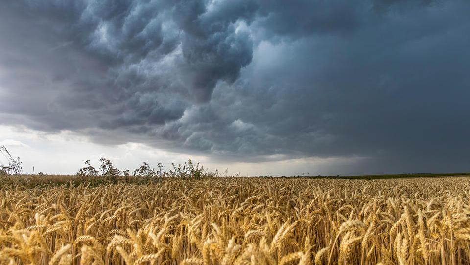 EU warnt vor globalem Phosphor-Mangel und drohenden Hungersnöten