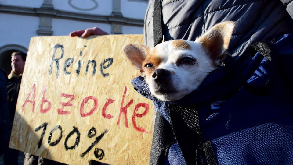 Wegen Hundesteuer: Gemeinde-Mitarbeiter spionierte Hundehalter auf Facebook aus