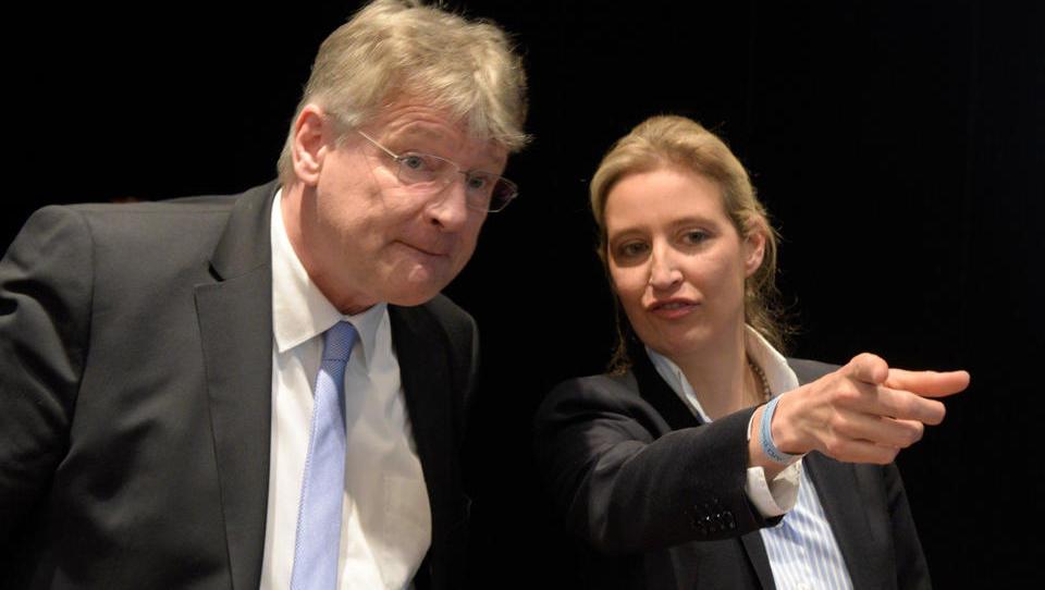 AfD-Spitze setzt kompletten Landesvorstand im Saarland ab