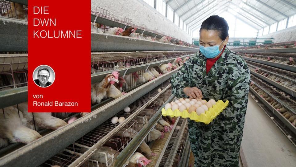 Die großen Viren-Epidemien kommen aus China: Ist der gewaltige Eier-Konsum der Grund?