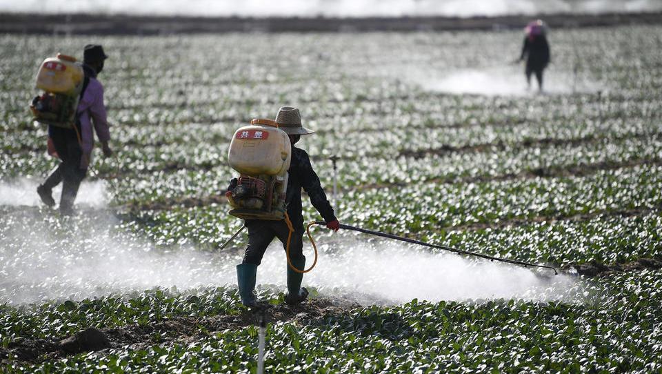 Grüne und Linke fordern Exportstopp für gefährliche Pestizide