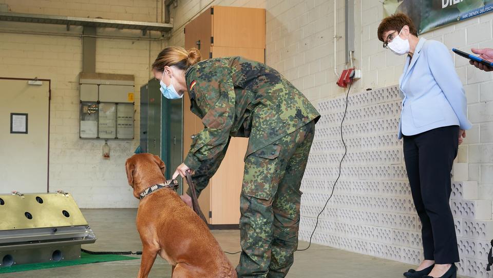 Bundeswehr bildet Hunde aus, um Corona-infizierte Menschen zu identifizieren