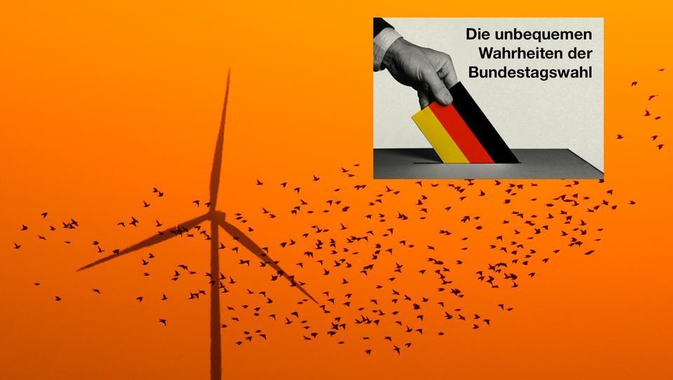 Bundestagswahl 2021: Platzt der Traum von der Energiewende? - TEIL 1