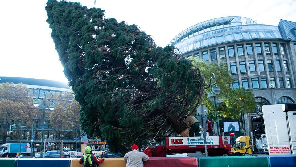 Berliner Spitzenkoch: Insolvenzen werden rieseln wie Nadeln vom Weihnachtsbaum