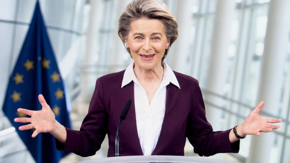 Verstöße im Naturschutz: Von der Leyens EU-Kommission verklagt Deutschland vor EuGH