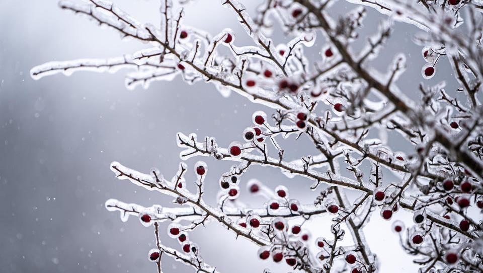 Arktische Kältewelle: Der Bau fällt als Konjunkturtreiber aus