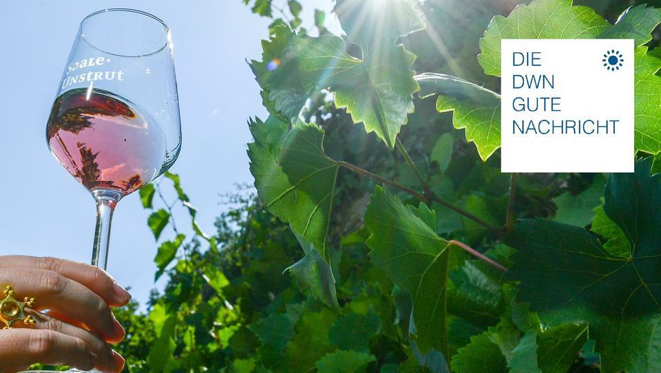 Auf der Sommerterrasse: Kleine Köstlichkeiten zum Rosé
