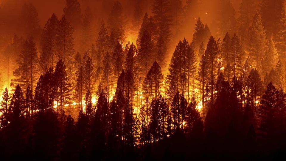 Brände wüten in Italien und Russland – Überflutungen in Japan und in der Türkei