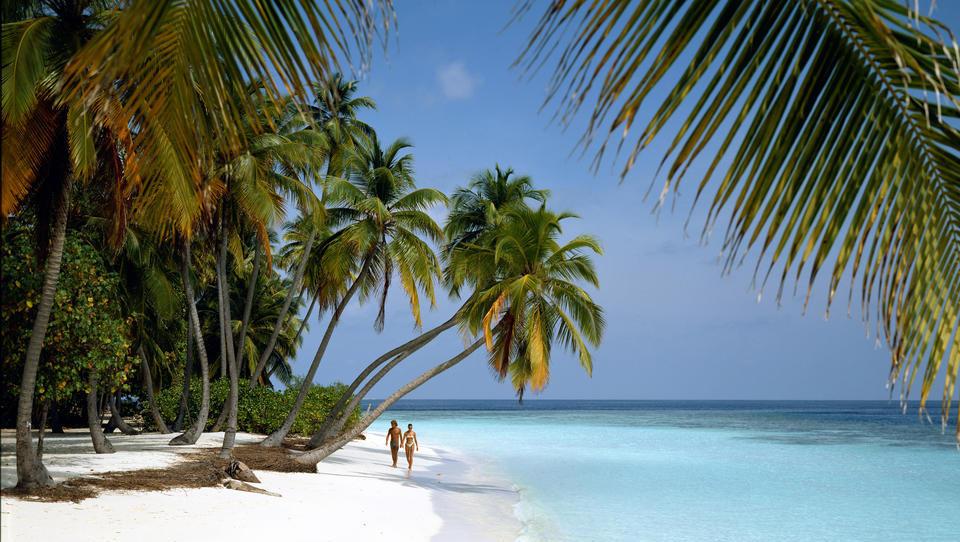 Flucht vor Corona und sozialen Unruhen: Superreiche kaufen sich einsame Inseln als Rückzugsorte