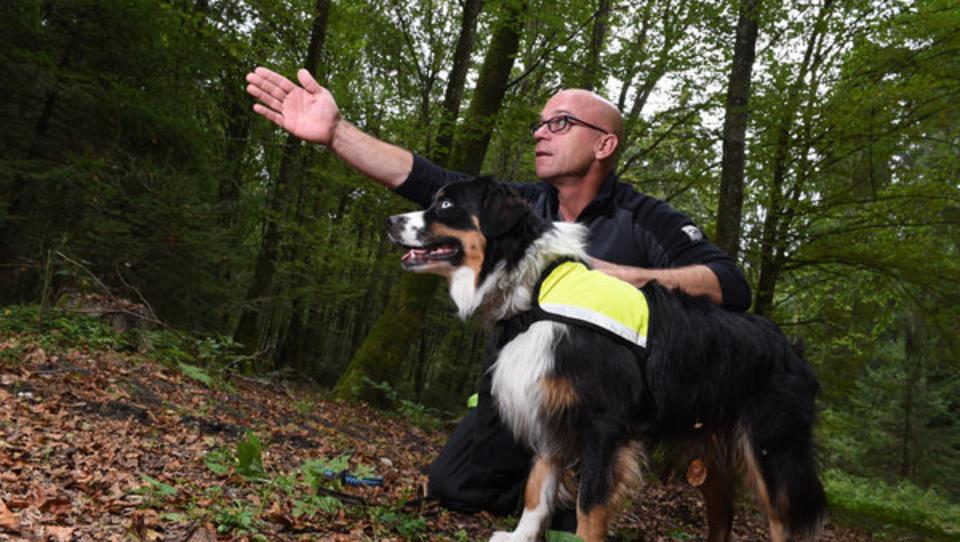 Pawlowsche Hunde: Wie Google und Co ihre Nutzer konditionieren und kontrollieren