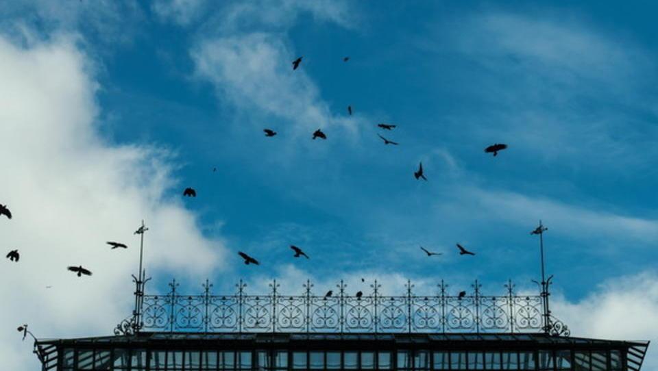 Blauer Himmel, weißer Qualm: Impressionen aus einer Stadt im Ausnahmezustand