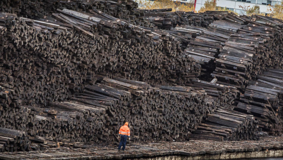 Ärzte warnen vor Asthma, Krebs und Herzinfarkt: Ist Biomasse als alternative Energiequelle viel zu riskant?