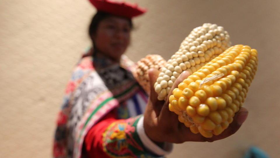 Weltmarktpreise für Grundnahrungsmittel steigen auf 7-Jahres-Hoch