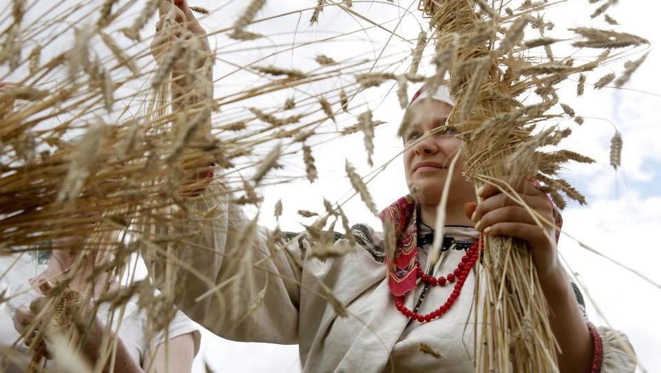 Russlands Ernte hinkt dem Vorjahresniveau weit hinterher