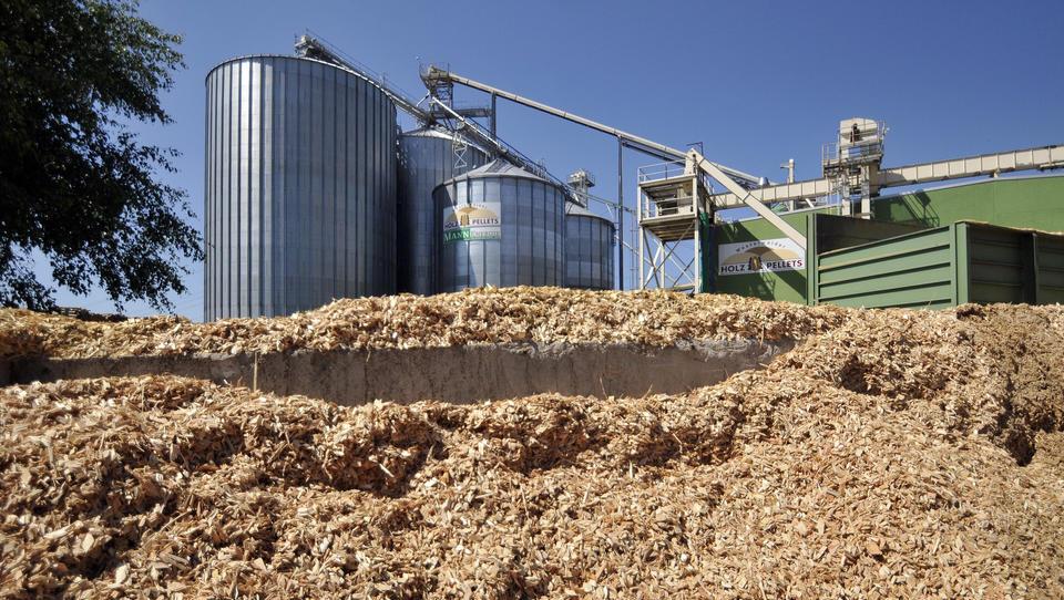 Staat fördert klimaschädliche Verbrennung von Biomasse