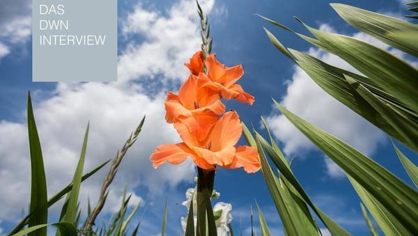 Bizarre Allianz: Ursula von der Leyen, Finanz-Investoren und Grüne kämpfen gemeinsam für den Klima-Deal