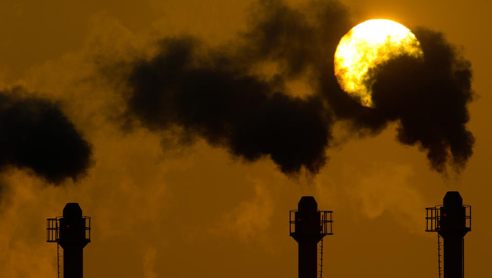 Europäische Umweltagentur will Ernährung, Energiekonsum und Mobilität der Menschen radikal ändern