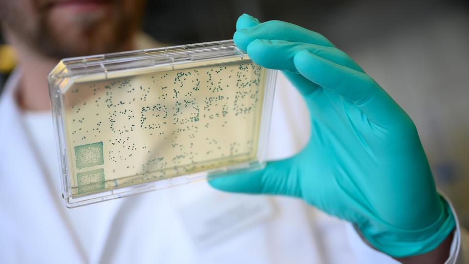 Ehemaliger Forschungsleiter von Pfizer fordert Abbruch der laufenden Corona-Impfstudien