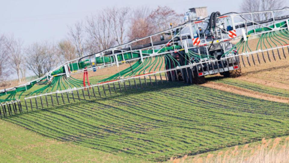 Zu viel Nitrat: Deutsche Forscher verbessern mit künstlicher Intelligenz Grundwasser