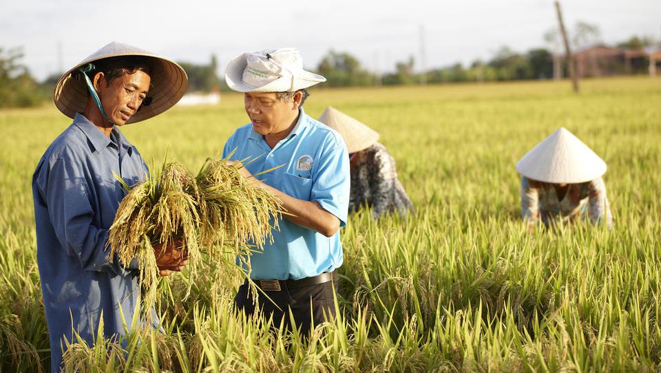 Bayer will US-Saatgutriesen Monsanto übernehmen