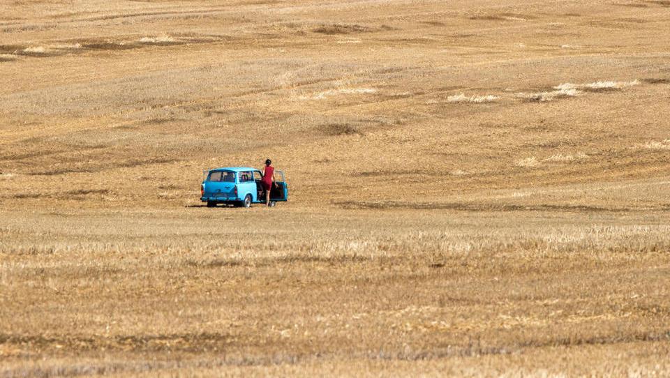 Erntebericht 2020: Ertrag unterm Durchschnitt, große regionale Unterschiede