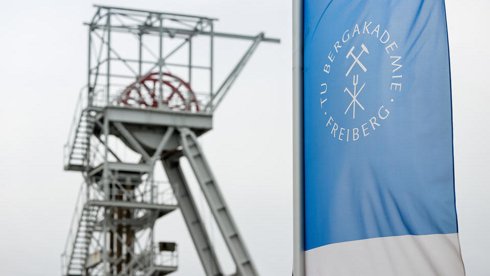 Sächsische Wissenschaftler stellen aus Meeres-Schwamm Abwasserfilter her