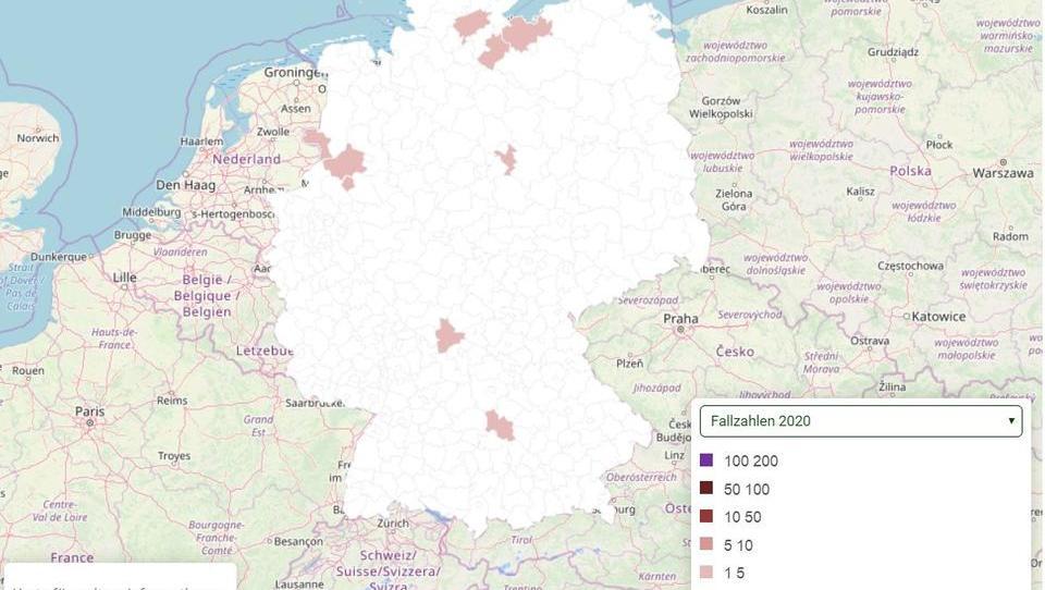 Deutschland: Bisher 29 Personen mit Hanta-Virus infiziert