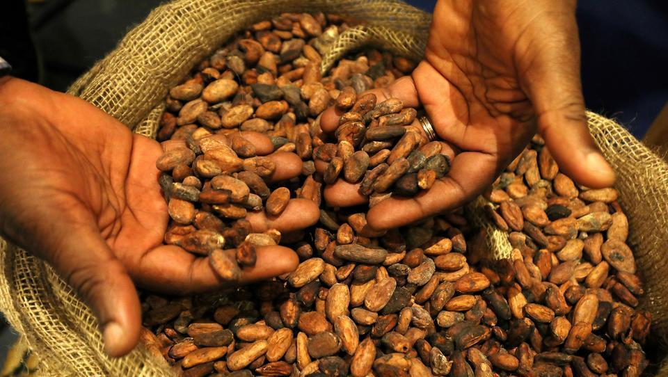 Corona stürzt den Kakao-Preis in einen Bärenmarkt
