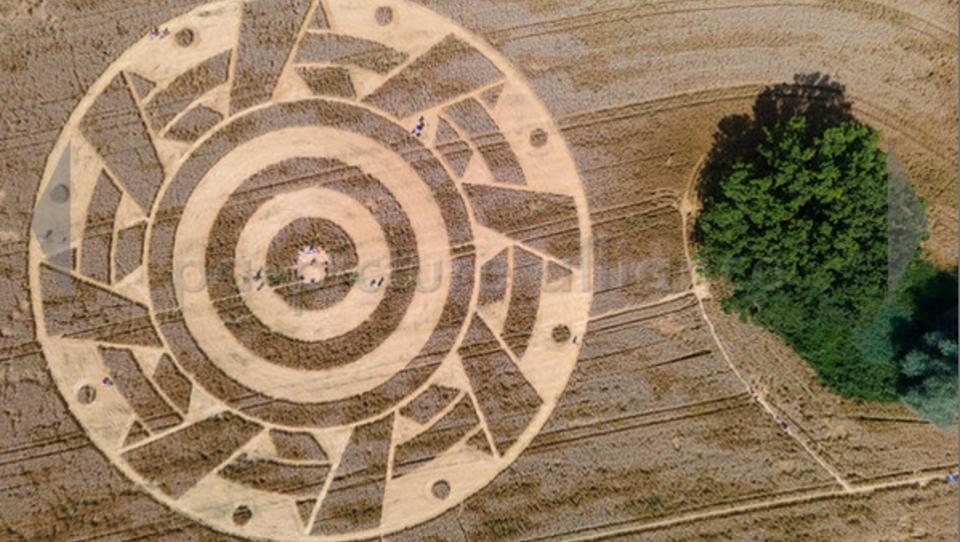 Bayern: Riesiges Kornkreiszeichen lockt hunderte Schaulustige an