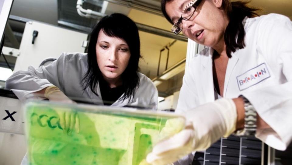 Deutsches Biotech-Unternehmen Brain geht an die Börse