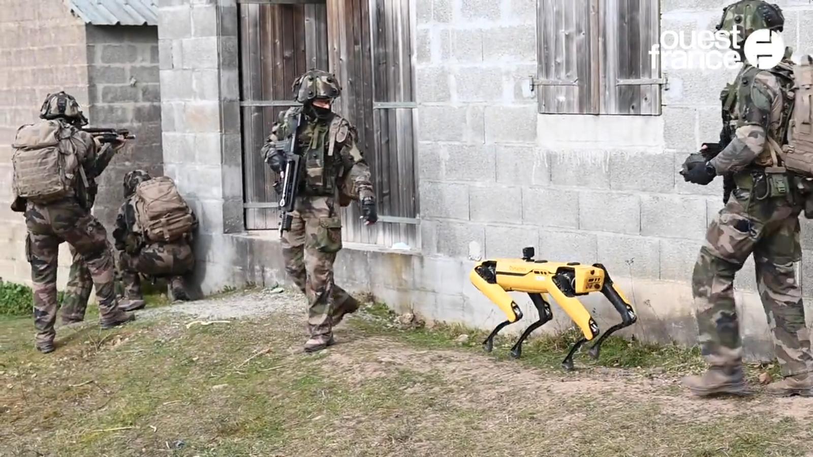 Frankreichs Militär testet Roboter im Häuserkampf