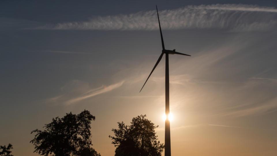 Apple baut in Dänemark gigantischen Windpark - größer als der Kölner Dom