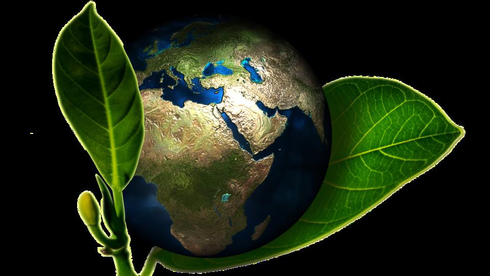 Europäische Aktien profitieren von European Green Deal