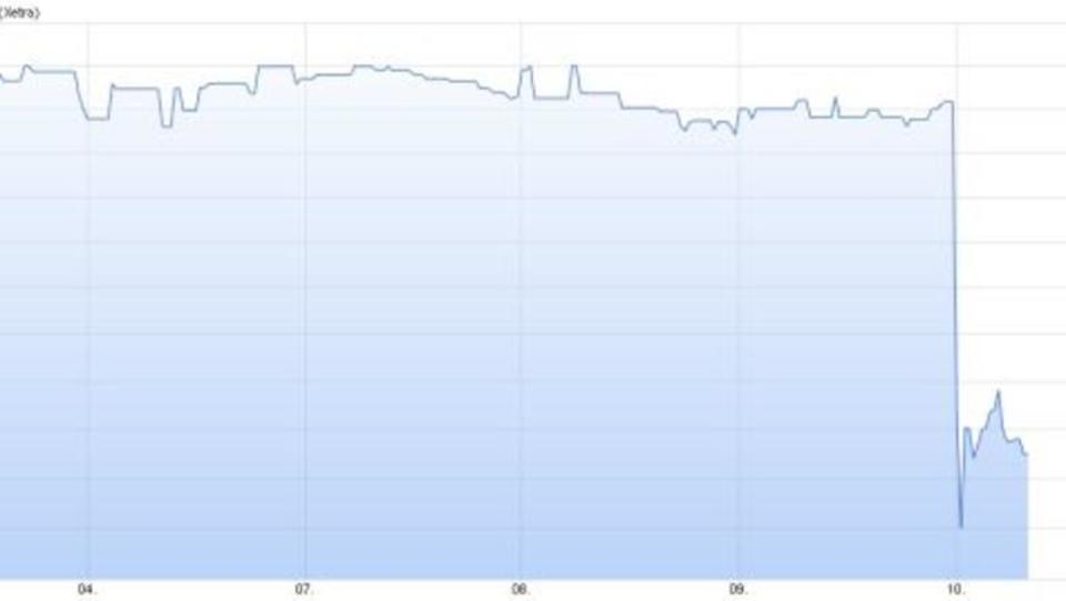 Nach Prognosesenkung: Hornbach-Aktie verliert drastisch an Wert