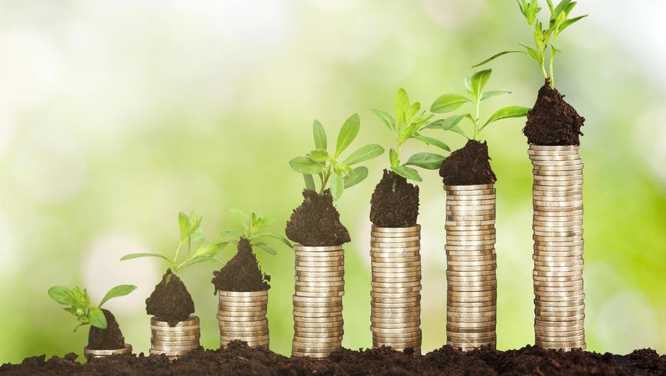 Impact Investing: Mit gutem Gewissen Geld verdienen