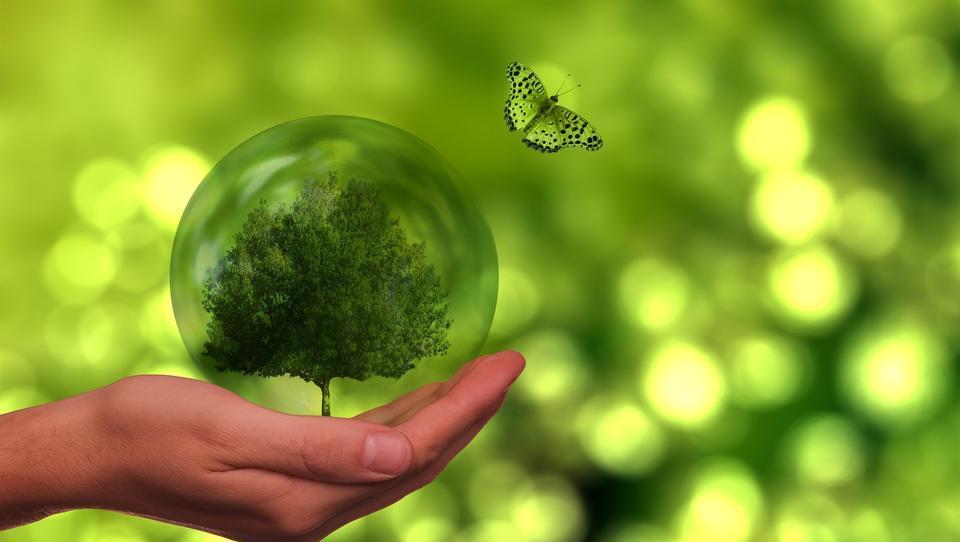 """""""Nachhaltigkeit ist ein fantastisches Werbeversprechen"""""""